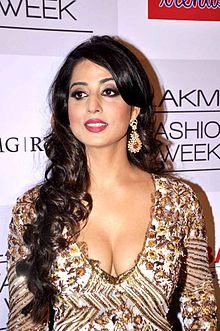 About Mahi Gill Actress Biography Detail Info